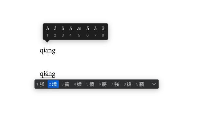 带声调字母的输入