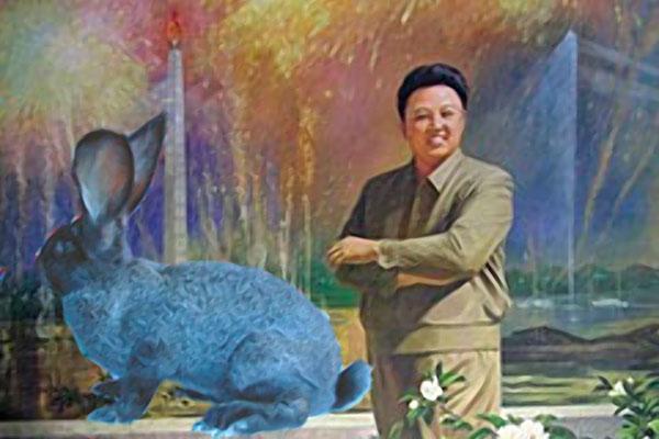 Jong-Il-bunny.jpg