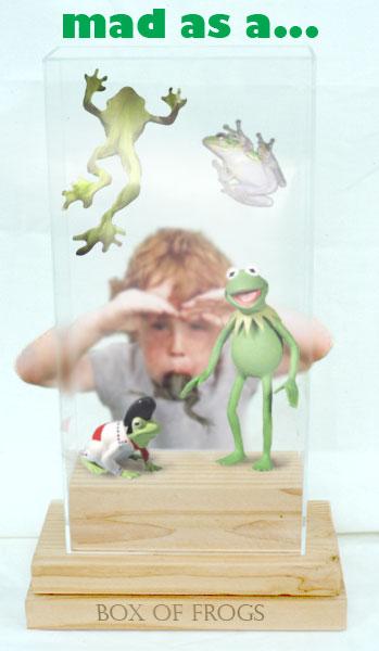 box-of-frogs.jpg