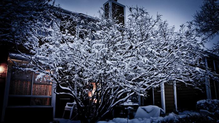 Winters Around - Photo by Jennifer Molnar